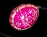 Pink Flower Pot0102013