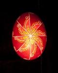 Radiating Petal Star1104013